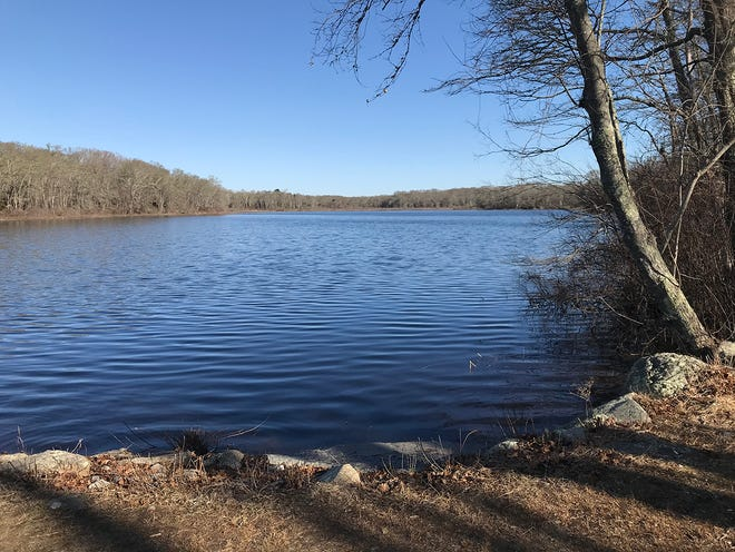 The 18-acre Simmons Pond, named for 18th-century mill owner Benjamin Simmons, is the centerpiece of the wildlife sanctuary in Little Compton that bears his name.