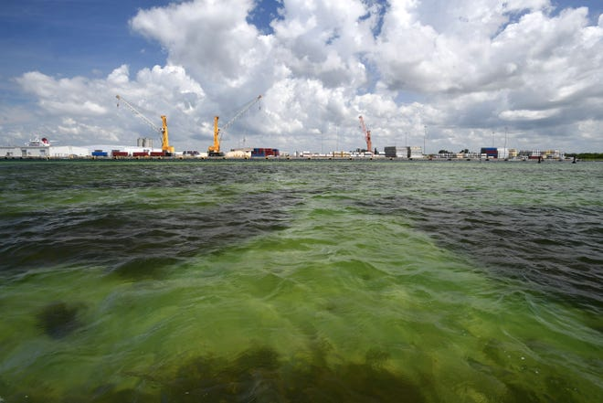 The water of Tampa Bay near Port Manatee.  Millions of gallons of industrial wastewater are being pumped into Tampa Bay as the result of a leak at the Piney Point fertilizer plant processing plant.
