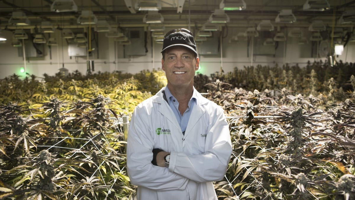 Bill to limit potency of Florida medical marijuana ignites backlash from cannabis proponents