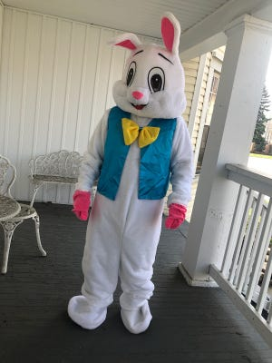 Brian Robertson shows off his Easter Bunny costume which he will be wearing on Saturday at Taste of Memphis for their all-day Easter celebration.