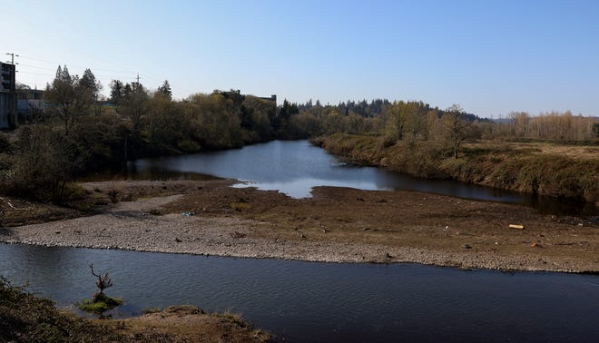 The Willamette Slough as seen from Riverfront Park. Fish studied in the slough have similar levels of dioxins as those in other areas of the Willamette River.