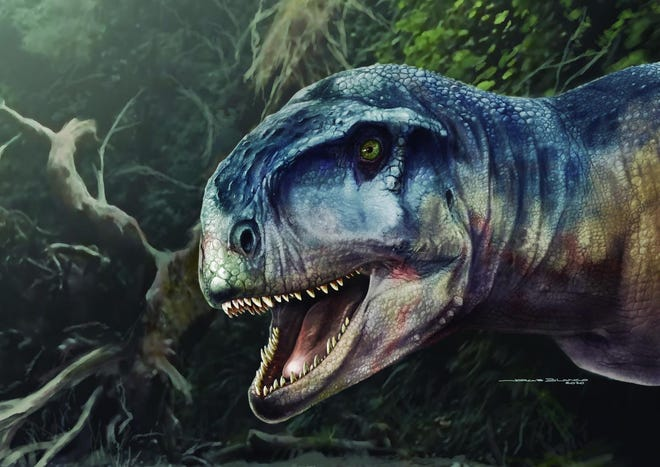 An artist's conception of Llukalkan aliocranianus, a newly discovered species of meat-eating dinosaur. A skull of the dinosaur was found in Argentina.