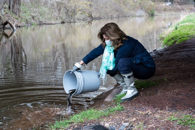 Bucks County Treasurer Kris Ballerini helps stock the Delaware Canal with fish to ready it for the opening day of trout season in Pennsylvania on Saturday.  Ballerini reminds those who want to fish to get their fishing license if they are age 16 or older. They can be purchased through the treasurer's office.