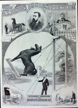 The horse show brought to the Cheboygan Opera House featured many different tricks other animals had never tried to perform before, especially on a stage.