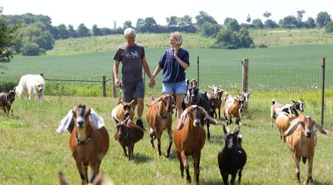 Gretta's goats will host a goat hike from 4 to 5 p.m. April 3 at Short Leg Farm, 498 N. Farwell Bridge Road, Pecatonica.