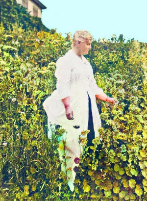 A colorized photo of Portsmouth-born writer and artist Celia Thaxter in her garden on Appledore Island in 1889.