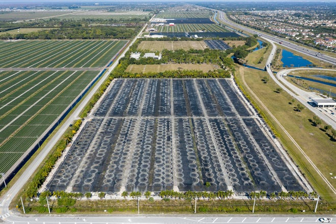 Kushner Companies is seeking county approval to build a 1-million-square foot, Amazon-type distribution facility just west of the turnpike and north of West Atlantic Avenue in unincorporated Delray Beach. GREG LOVETT / PALM BEACH POST