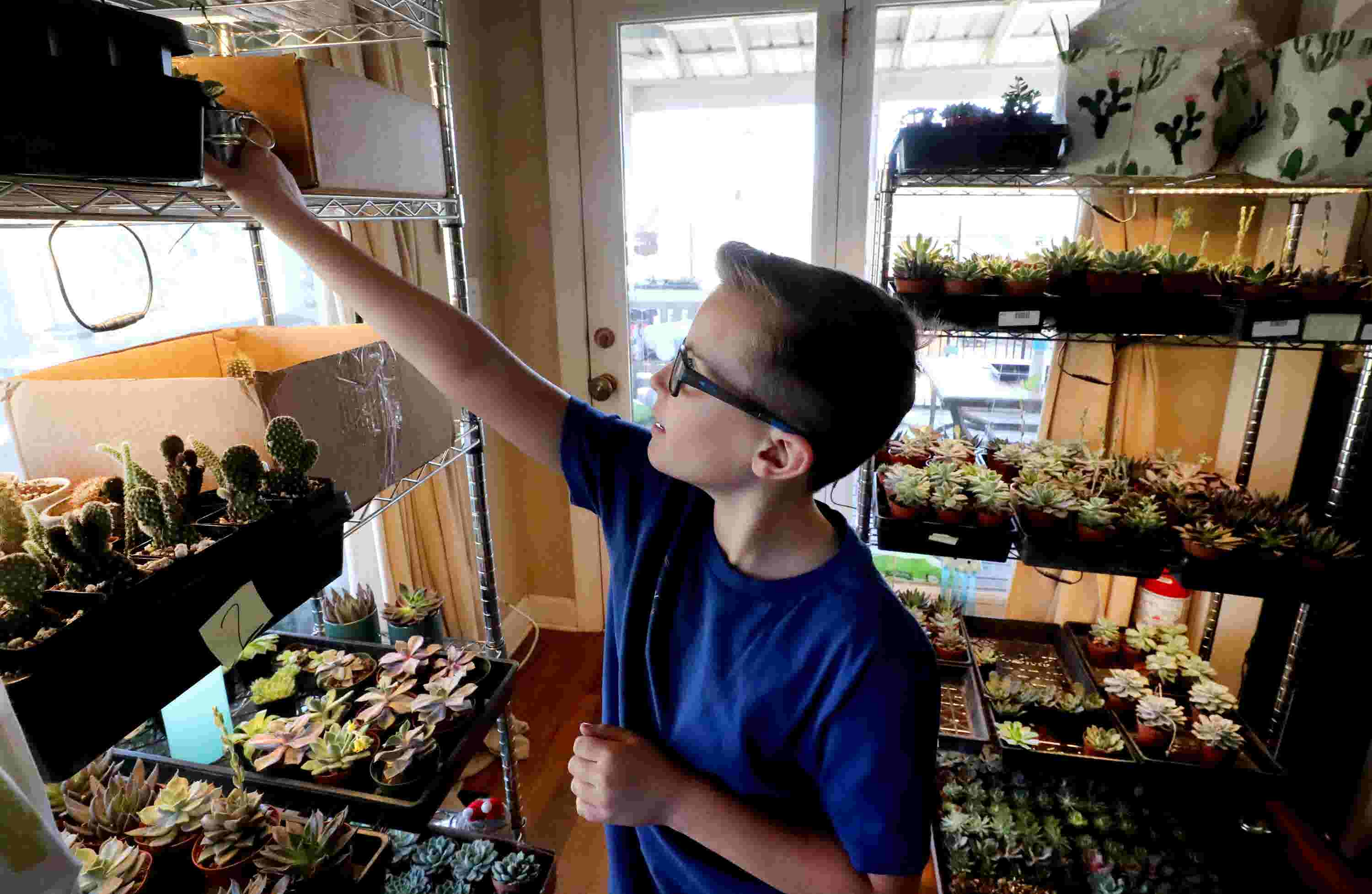 VIDEO: Young Murfreesboro entrepreneur starts cactus business
