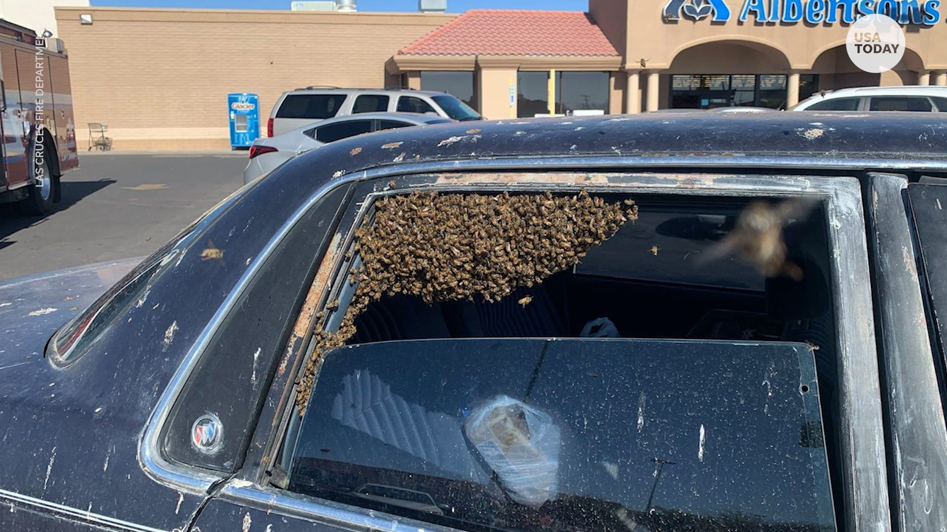 A firefighter and beekeeper helped remove 15,000 bees from parked car