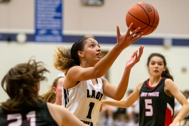 Hendrickson guard Zoe Nelson, the American-Statesman Central Texas Player of the Year, led the Hawks to their fourth straight regional semifinal appearance.