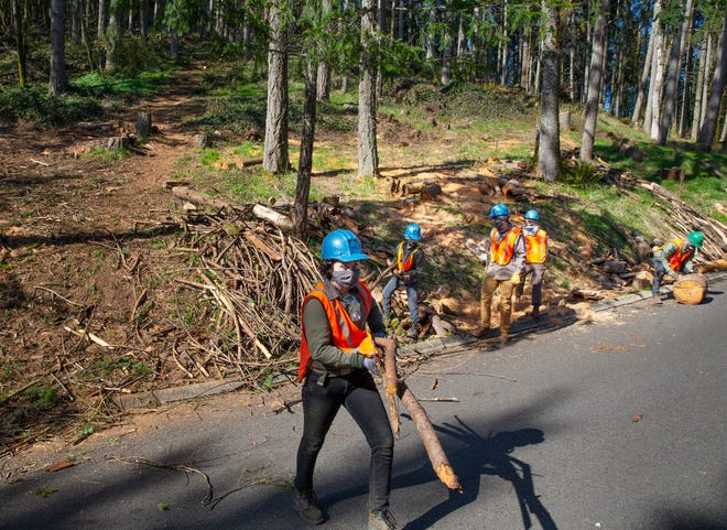 A crew with Northwest Youth Corps works to clear wood debris from a hillside in Eugene's south hills on April 1 in an effort to reduce the chance of wildfire spreading through the area.