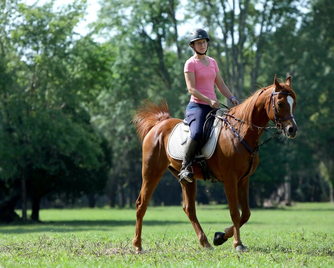 Lisa Smith, who will ride in the 1,000-kilometer (621 miles) horse race known as the Mongol Derby later this year, does a practice ride Wednesday on her training horse Amarr at a ranch west of Gainesville.
