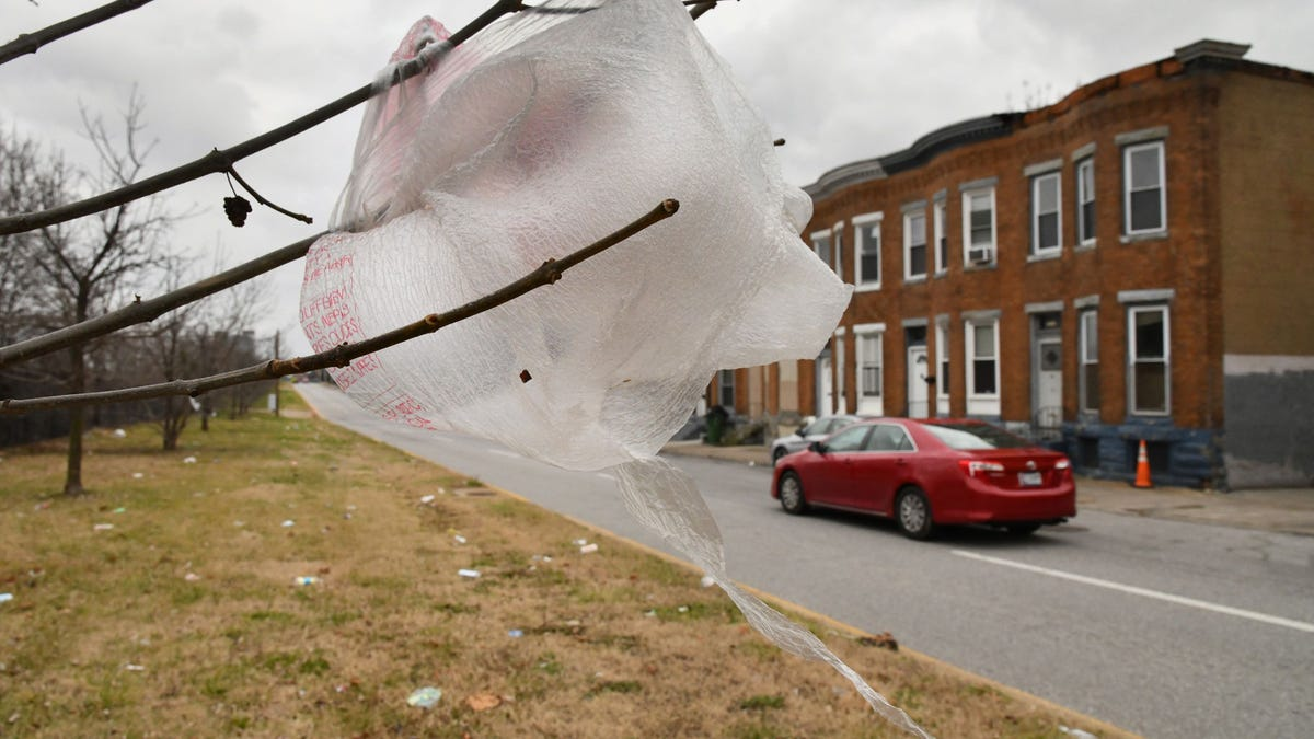Pandemic-paused plastic bag bans ripped anew by critics 3