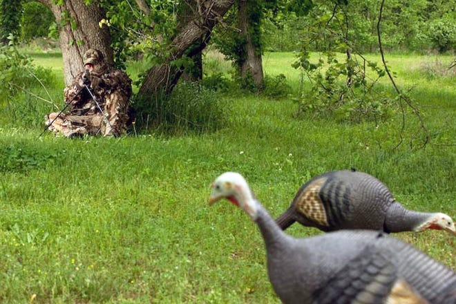 Good camouflage, a few calls and an accurate shotgun are all you need to tackle turkey hunting.