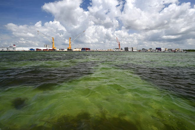 The water of Tampa Bay near Port Manatee in Manatee County, Florida. Millions of gallons of industrial wastewater are being pumped into Tampa Bay as the result of a leak at the Piney Point fertilizer plant processing plant. Taken March 31, 2021.