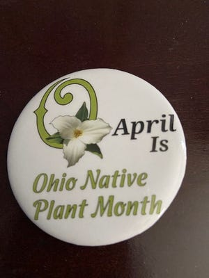 This button, supplied by The Ohio Native Plant Month state committee, will be a gift to each person attending the April 28 meeting of region 7, the Ohio Association of Garden Clubs at Pickwick Place.