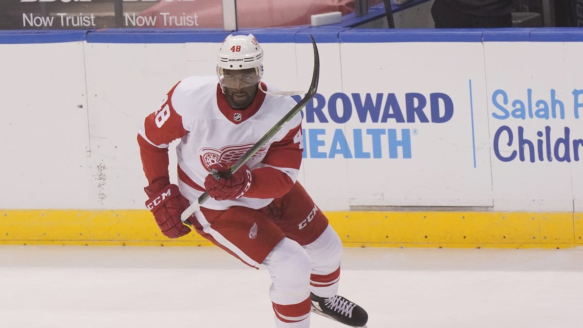 Red Wings show confidence Givani Smith is ready to stick in the NHL 1