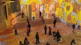Two immersive Van Gogh exhibits headed for Detroit