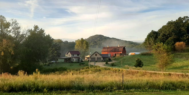 Together Farms, tucked into Driftless Area hills outside Mondovi, raises grass-fed beef and lamb and pasture pork, plus hosts on-the-farm events including weekly burger nights.