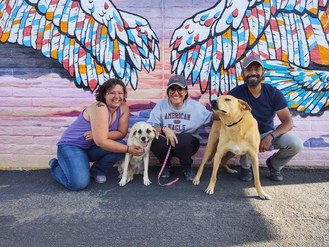 Heather Greenfield (left) of Paws Across Borders poses in Tucson with Sophie Boccard and Socrates Figueroa of Mazatlan Animal Rescue. Dogs Canela (left) and Chago are up for adoption through Paws Across Borders.
