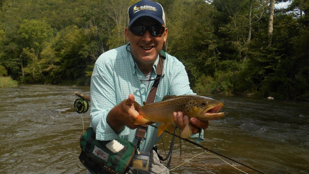 Cicadas bait in Pennsylvania will create. great fishing ...