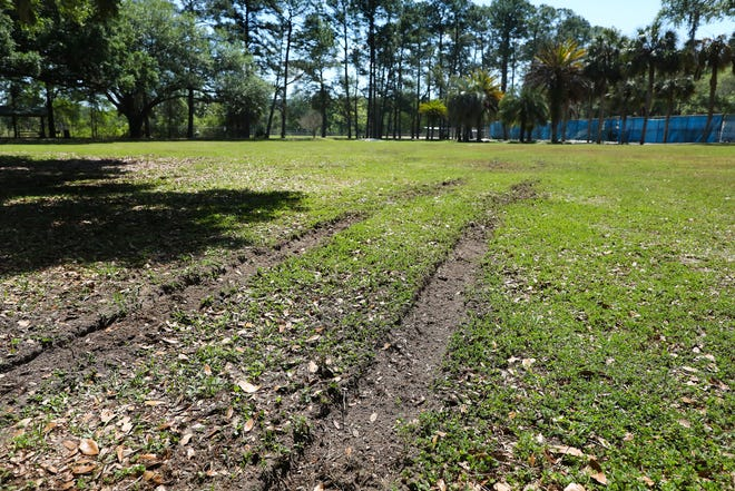 Tire ruts left in the grass at the T.B. McPherson Center are remnants of an Easter night party that officials said got out of control. [Brad McClenny/The Gainesville Sun]