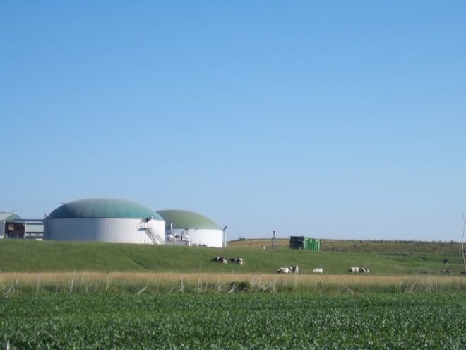 """Crave Brothers farm uses a biodigester system for manure. That creates enough energy for the farm and cheese factory as well as 300 homes. """"It is not always sunny or windy here, but there is always cow manure,"""" Debbie Crave says."""
