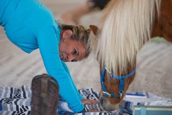 Yoga instructor Cindy Weir interacts with Toulmin during a miniature horse yoga class, Monday, April 5, 2021, at Naples Therapeutic Riding Center in North Naples.