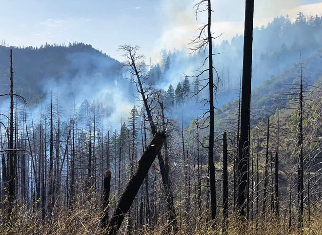 The Elk Fire burns in snags from previous fires on Monday, April 5, 2021. The wildfire was 50 to 75 acres in size about seven miles southeast of Happy Camp in the Klamath National Forest.