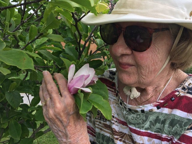 Jane McKinney with the Jane Tree on Windmill Island.