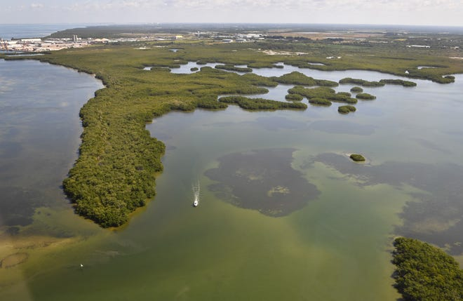 Bishop Harbor and Terra Ceia Aquatic Preserve State Park are located immediately south of Port Manatee along southern Tampa Bay. The park is popular with kayakers, boaters and anglers. Port Manatee and the Piney Point phosphogypsum stacks are visible in the background.