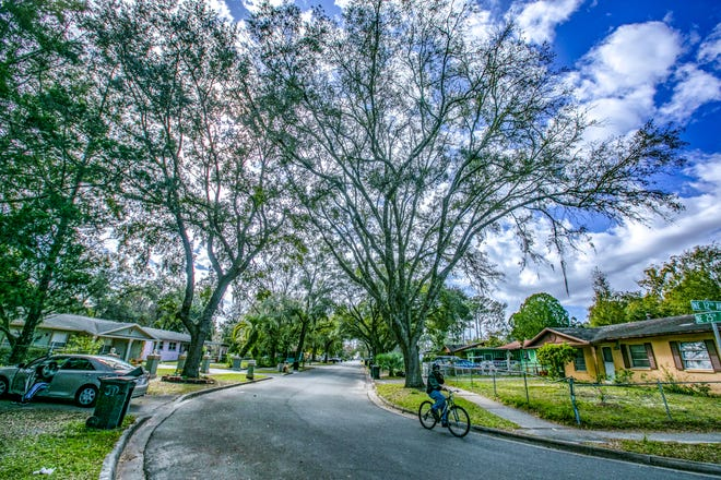 The Duval neighborhood is among those city leaders are putting money toward trying to protect with the My Neighborhood grant program. [The Gainesville Sun/File]