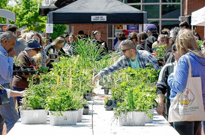Customers browse through various herbs for sale during the 2019 Herb Day event at Creekside Plaza in Gahanna. The yearly event had about 50 vendors and more than 5,000 plants representing 100 varieties of herbs for purchase.