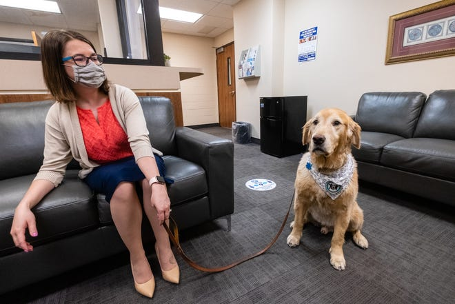 Courtney Carl, victim's rights coordinator, sits with Bruin, a 7-year-old Golden Retriever, in the Victim's Rights Unit Wednesday, April 7, 2021, in the St. Clair County Courthouse in Port Huron.  Bruin is part of the Canine Advocacy Program, a service that provides direct support to victims involved in the criminal justice system.
