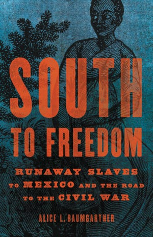 """Alice L. Baumgartner's """"South to Freedom"""" reveals stories of runaways who passed through Texas on their way to Mexico, but she also takes a fresh look at how the admission of Texas as a state upset the balance between slave and free states."""