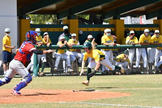 Palm Beach State College shortstop Dakota Gaillard dives for home-plate, scoring the game's first run in a win over Inspiration Academy. Gaillard is a Jupiter High grad.
