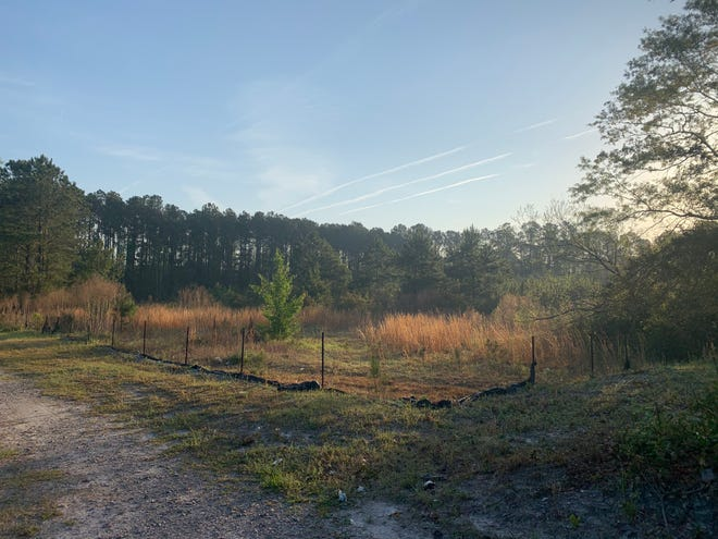 The New Hanover County Board of Commissioners approved a zoning change that will allow for the construction of Estrella Landing, an 84-unit affordable housing development, on this site near Gordon Road.