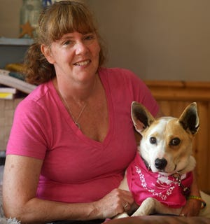 MILLBURY - Five years ago, Bay, a rescue Basenji, escaped from a Framingham home. She was found and trapped in Needham this week she was reunited with her owner, Renee Perry.