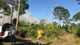 Wildfire burns at Indian River - St. Lucie county line