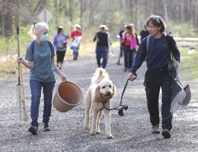 Volunteers Ginny Kelleher of Stow, left, and Amy Waldorf with her dog Charlie of Lyndhurst, walk to an area of Everett Road in Boston Township to clean up debris Saturday.