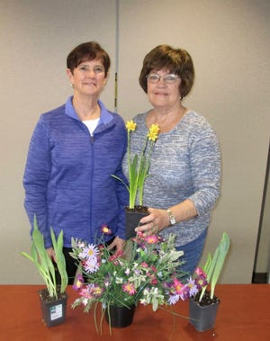 """Martha Herron, left, and Mary Jane Causemaker, representing the Hammond-Henry Hospital Auxiliary; show some of the items to be included in the Auxiliary's """"Spring in Bloom"""" flower/plant sale on Saturday, May 1. The sale will be from 9 a.m. to 1 p.m. in the northeast parking lot at the hospital. Items to be offered for sale are provided by Pink Prairie Gardens and include container pots, hanging baskets and unique annuals. All proceeds benefit auxiliary pledges. Rain date is Sunday, May 2."""