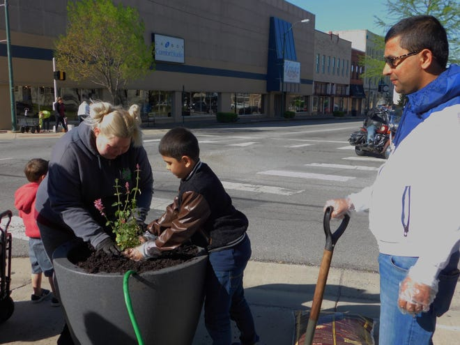 Members of Keep Sherman Beautiful plant flowers in new planters around downtown Sherman Saturday morning.