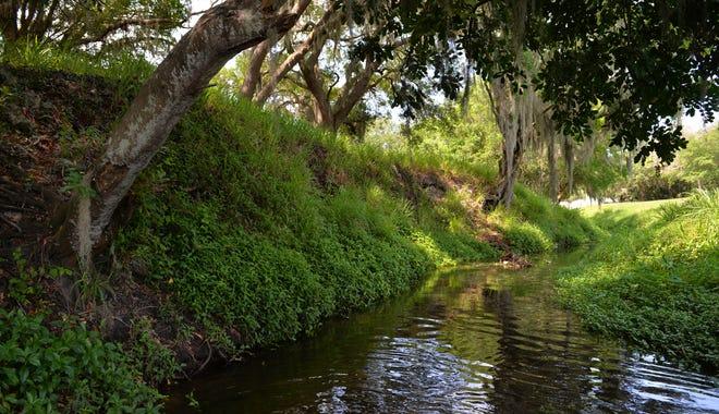 A shady stretch of the Main B Canal, alongside Sarasota's Bobby Jones Golf Course in 2016.