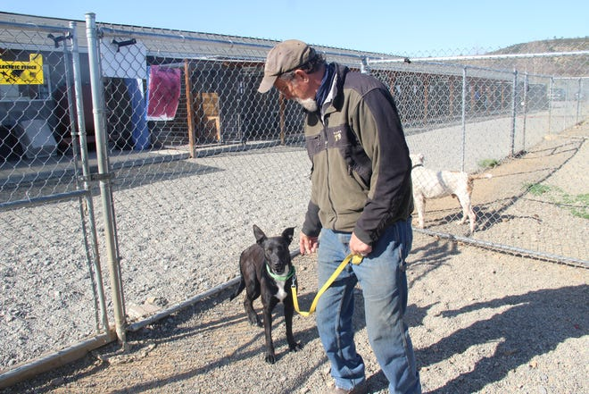 Rescue Ranch executive director John Golay with Lydia, a 2-year-old mix.