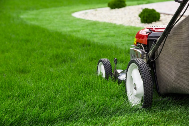 If you mow your lawn more frequently, your lawn will be healthier.