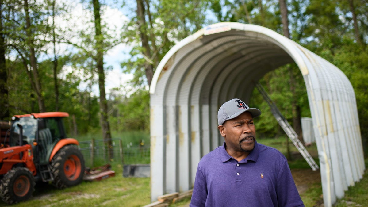 Standing out from the crowd: Ron Simmons isn't your average hog farmer