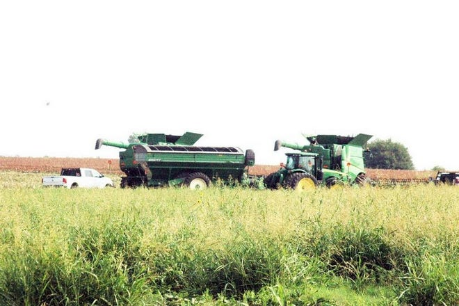 An agriculture producer works to harvest a crop near Howard Road in this 2018 file photo. The Ellis County Extension Office will be holding training sessions for private chemical applicators in the coming months, beginning on Tuesday, April 27.