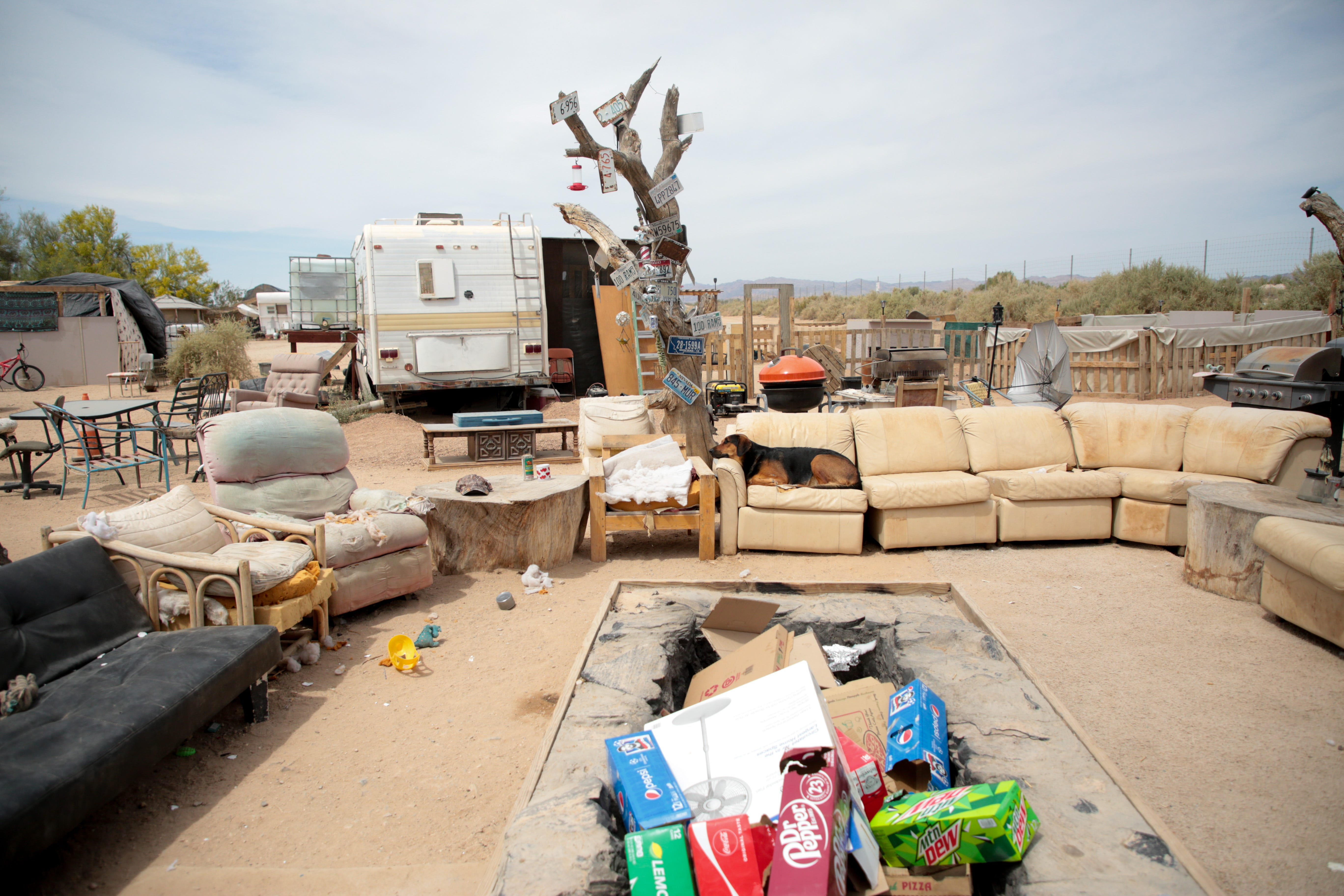A dog sits on a couch outside the California Ponderosa camp in Slab City, Calif., on Monday, April 5, 2021.