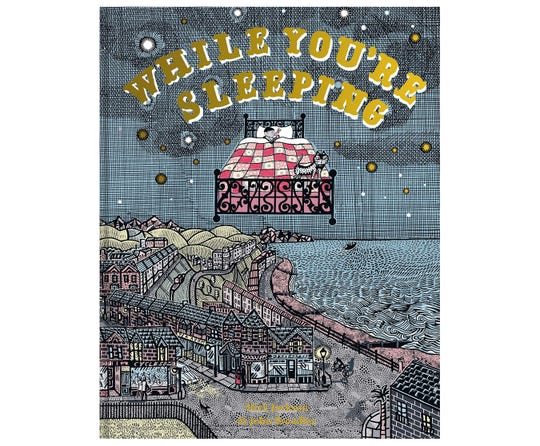 """""""While You're Sleeping"""" by Mick Jackson and illustrated by John Broadley"""