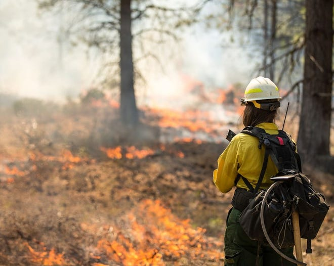 The U.S. Forest Service is conducting a controlled burn Wednesday in Greene County.
